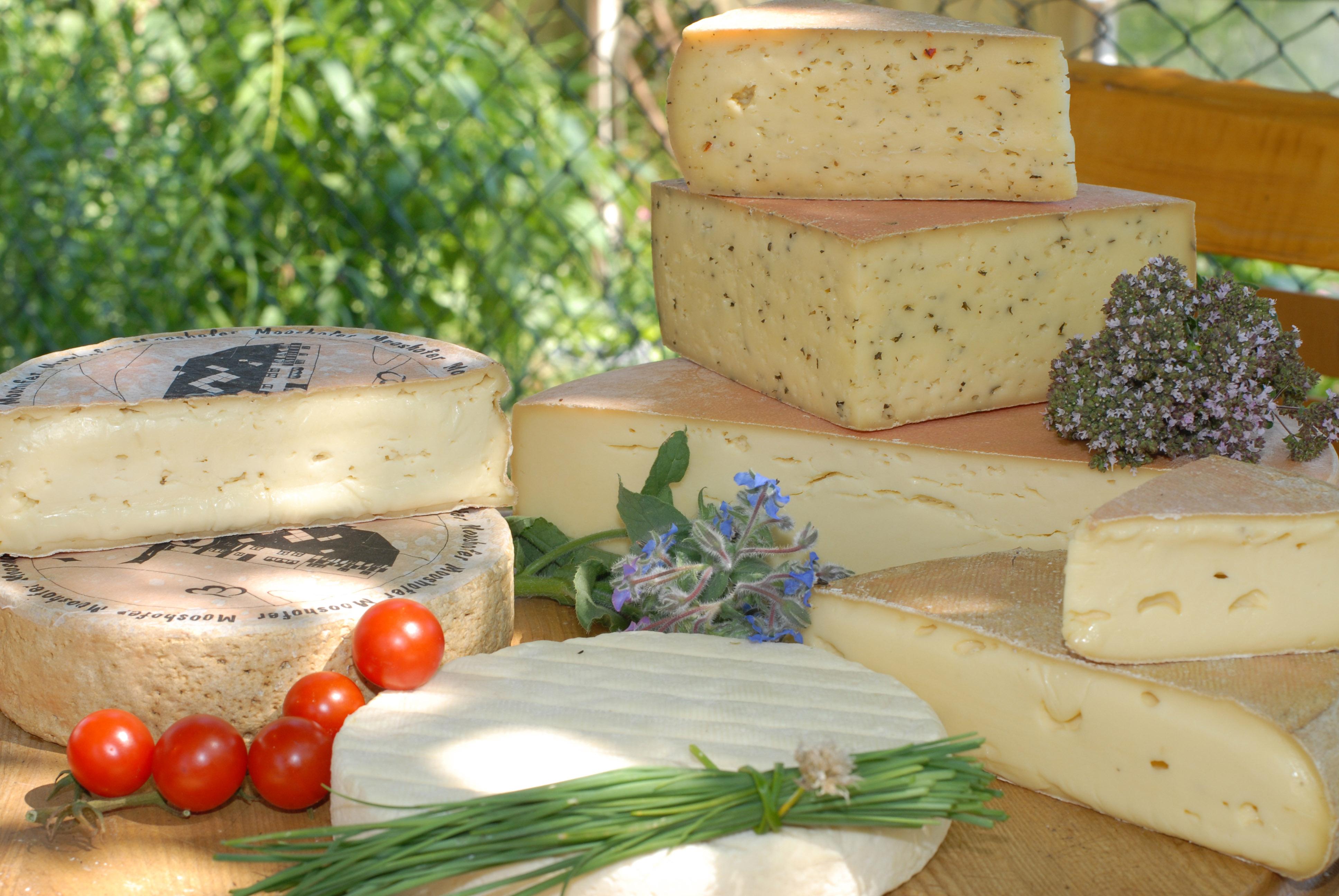 Leckerer Käse aus Rohmilch