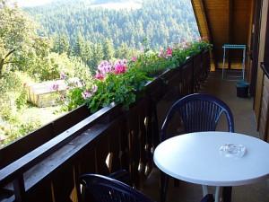 balkon1fewo-2